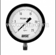 WISE Test Pressure Gauge P229