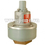 Kunkle Valve Bailey 616D Safety Relief Valve