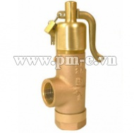 Kunkle Valve Bailey 707 Safety Relief Valve